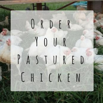 Sunbury PA Pastured Chicken Northumberland County
